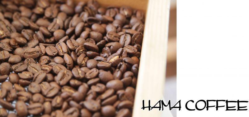 coffee schools