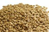 【生豆】グァテマラSHB・アンティグア・アゾテア農園