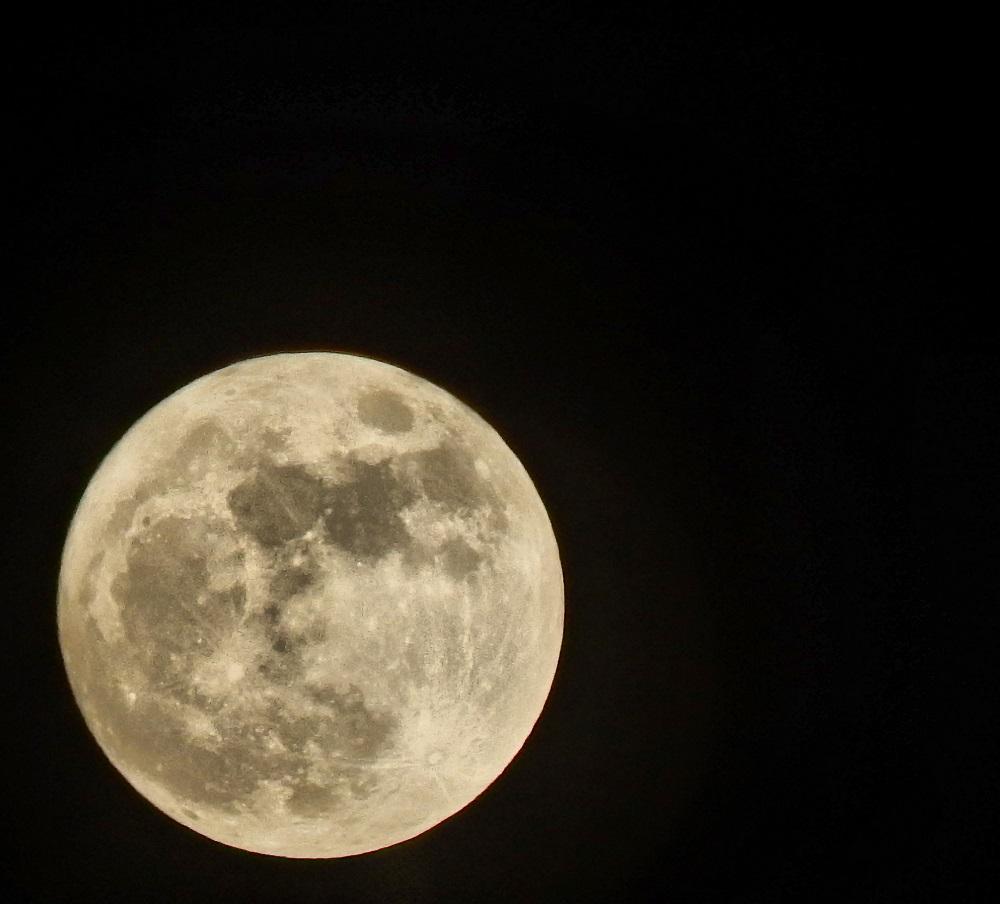お月見クルーズ02